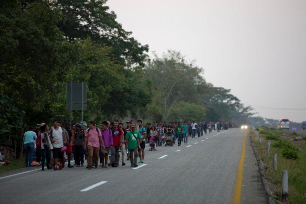 migrantes operativo